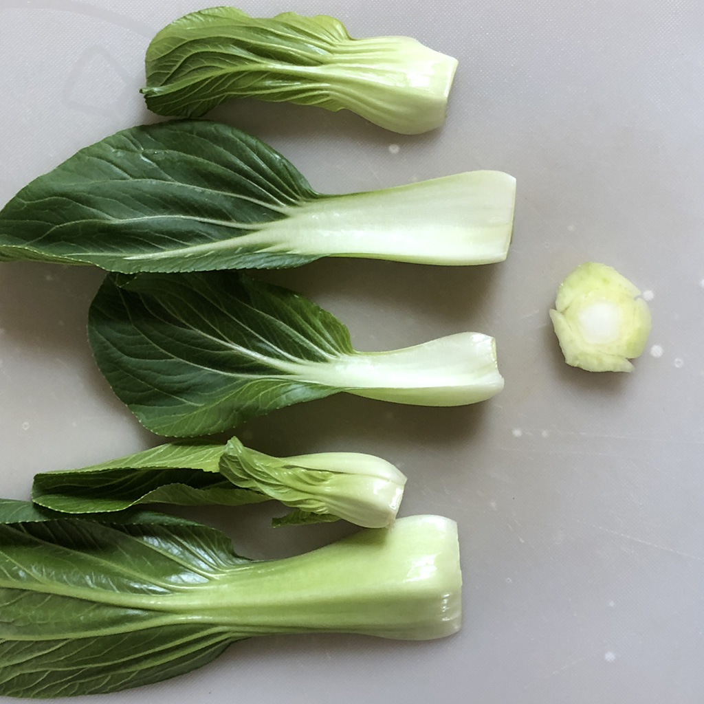 dishy.:チンゲン菜の準備